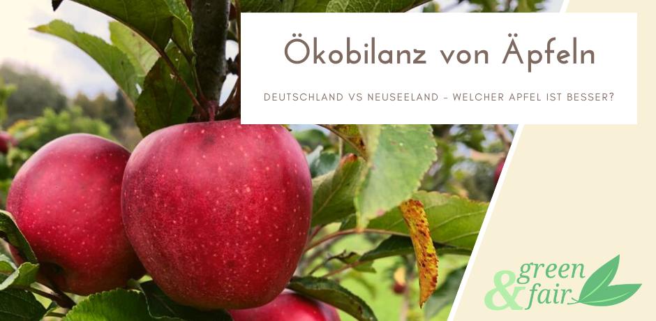 Ökobilanz Äpfel - Neuseeland vs. Deutschland
