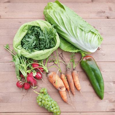 Nachhaltiger Blog - Thema Ernährung